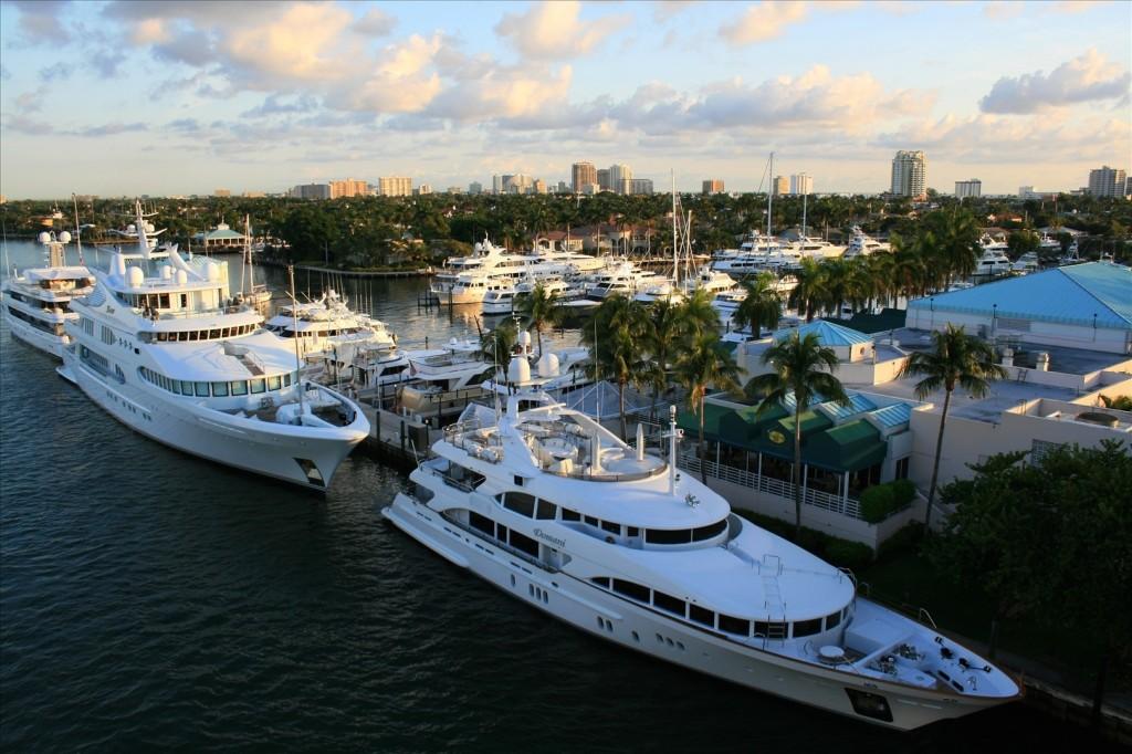 Fort Lauderdale di minerva bloom